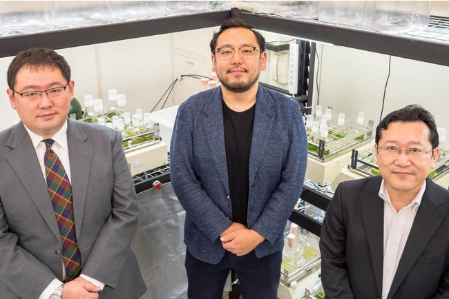 (写真左から)取締役CSO 竹下毅、代表取締役社長 CEO 木村周、取締役 CRO・CTO 安井強